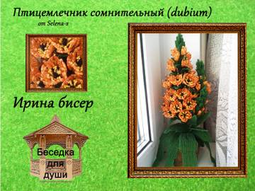 http://se.uploads.ru/t/RMyD1.jpg