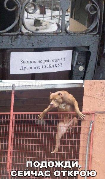 http://se.uploads.ru/t/RcWPZ.jpg