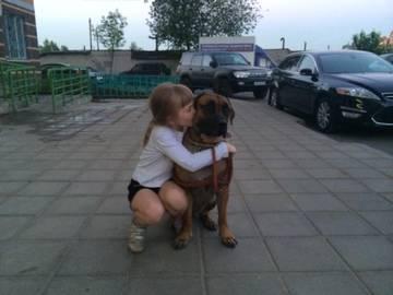 http://se.uploads.ru/t/Rcpjv.jpg