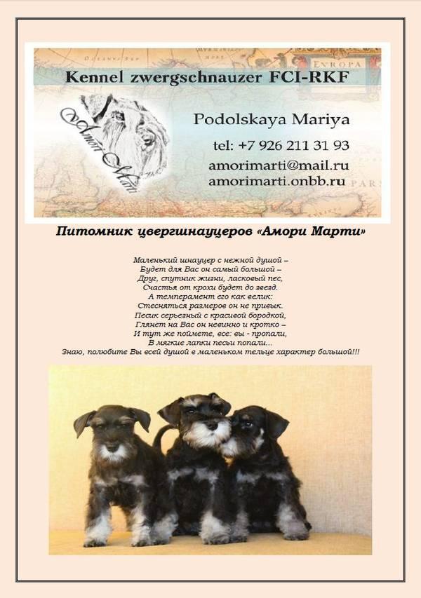 http://se.uploads.ru/t/RsX6Z.jpg