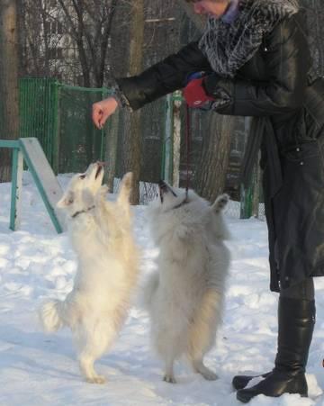 http://se.uploads.ru/t/RtrwU.jpg