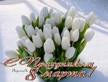 http://se.uploads.ru/t/SvZJD.jpg