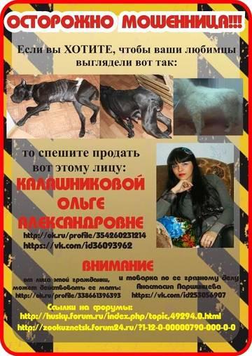 http://se.uploads.ru/t/TNLFc.jpg