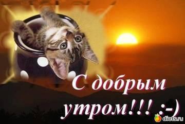http://se.uploads.ru/t/U4baQ.jpg