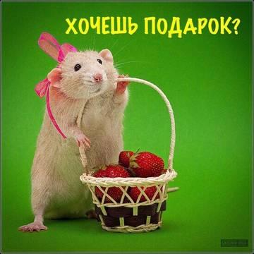 http://se.uploads.ru/t/UAKBe.jpg
