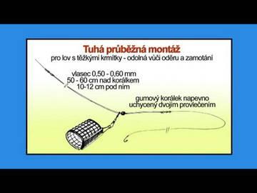 http://se.uploads.ru/t/Ufl8L.jpg