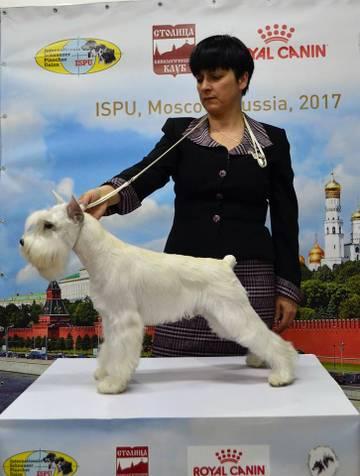 http://se.uploads.ru/t/UzVwD.jpg