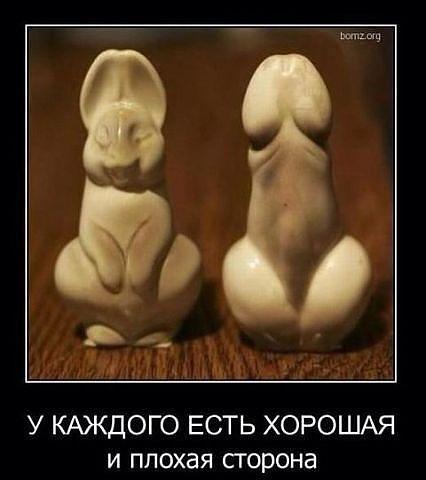 http://se.uploads.ru/t/V4BLb.jpg