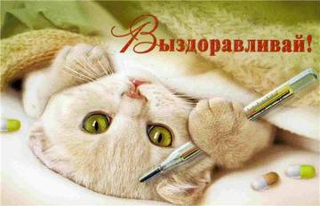 http://se.uploads.ru/t/VcDx1.jpg