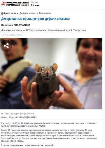 http://se.uploads.ru/t/WXlfH.png