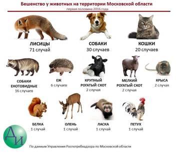http://se.uploads.ru/t/WhjYc.jpg