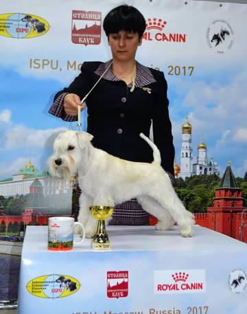 http://se.uploads.ru/t/WtqjE.jpg