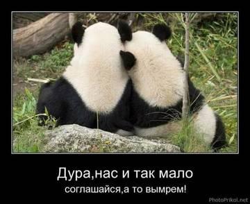 http://se.uploads.ru/t/X5r4C.jpg