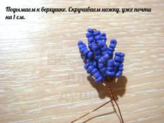 http://se.uploads.ru/t/XtfCi.jpg