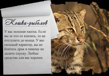 http://se.uploads.ru/t/YApzj.png