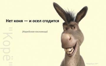 http://se.uploads.ru/t/aZ9Ys.jpg