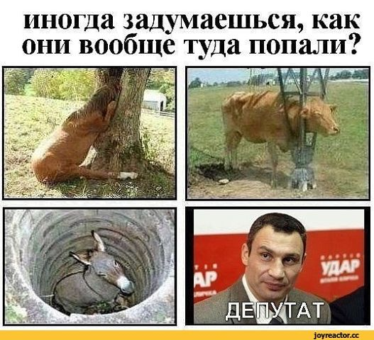 http://se.uploads.ru/t/arOxB.jpg
