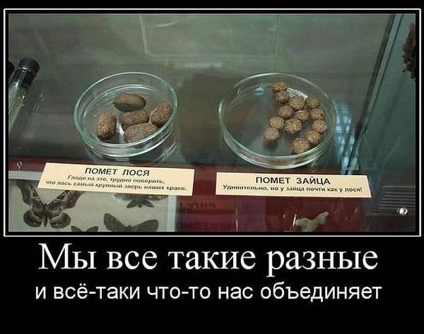 http://se.uploads.ru/t/b3imy.jpg
