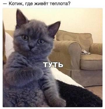http://se.uploads.ru/t/bkmhE.jpg