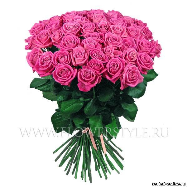 http://se.uploads.ru/t/brB9s.jpg