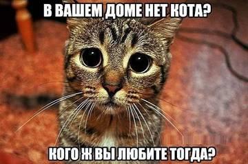 http://se.uploads.ru/t/dvXLt.jpg