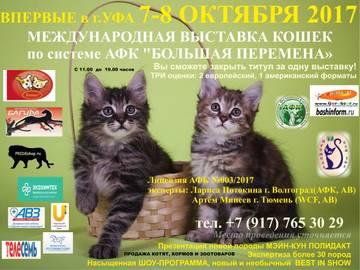 http://se.uploads.ru/t/eoEpF.jpg