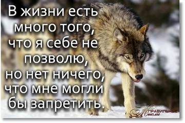 http://se.uploads.ru/t/fTNS7.jpg