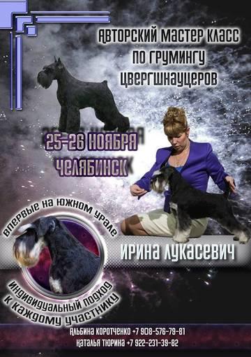 http://se.uploads.ru/t/frVeA.jpg