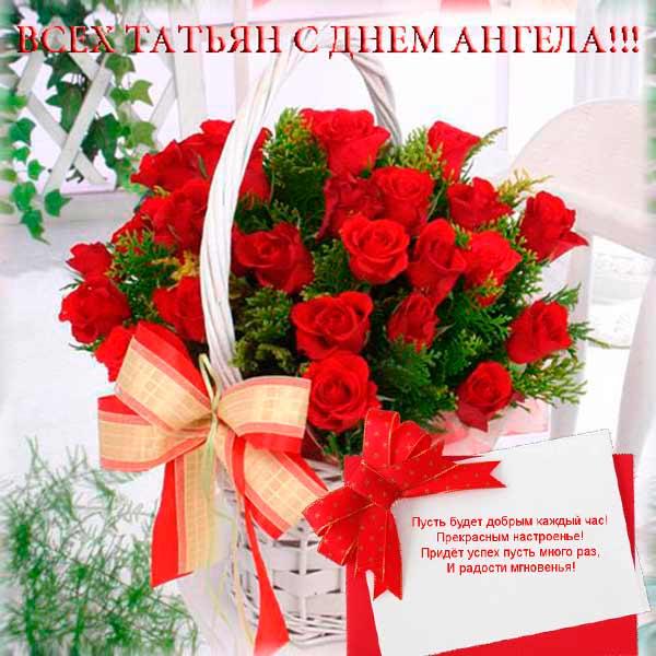 http://se.uploads.ru/t/g290d.jpg
