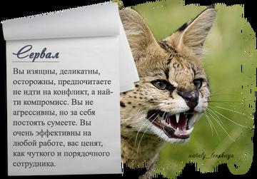http://se.uploads.ru/t/gLiCs.png