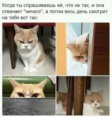 http://se.uploads.ru/t/gt7c0.jpg