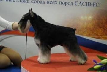 http://se.uploads.ru/t/guh5D.jpg