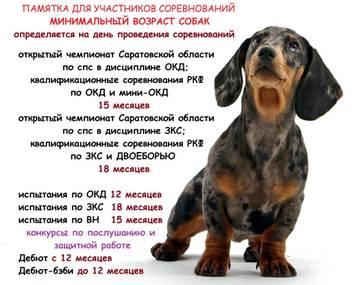 http://se.uploads.ru/t/i45b8.jpg
