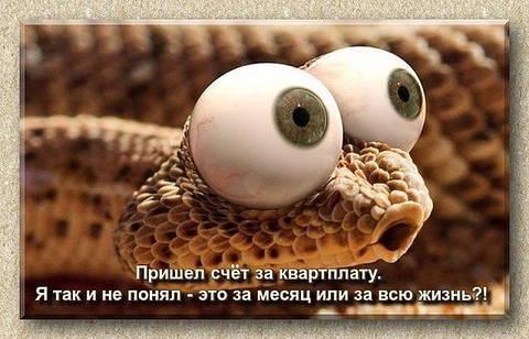 http://se.uploads.ru/t/iLsJG.jpg