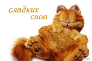 http://se.uploads.ru/t/ied8b.jpg