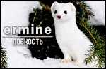 http://se.uploads.ru/t/iefVv.jpg