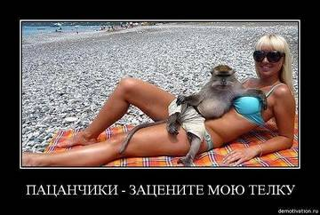 http://se.uploads.ru/t/io2qj.jpg
