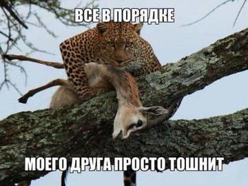 http://se.uploads.ru/t/jaJOV.jpg