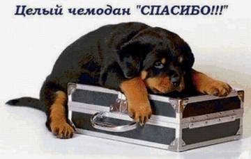 http://se.uploads.ru/t/k56rG.jpg