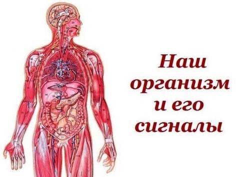 http://se.uploads.ru/t/l3Ynu.jpg