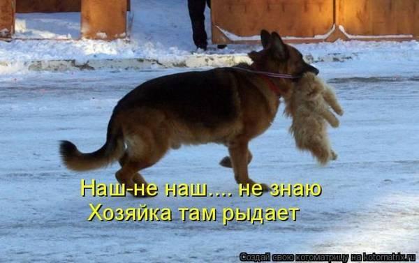 http://se.uploads.ru/t/lITgS.jpg