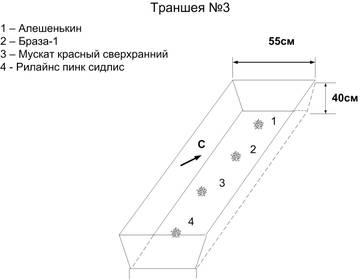 http://se.uploads.ru/t/miqwB.jpg