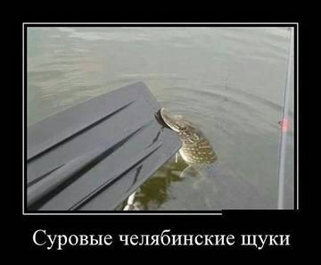 http://se.uploads.ru/t/mtnsF.jpg