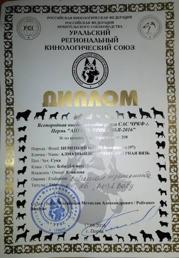 http://se.uploads.ru/t/n7dLH.jpg