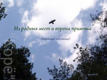 http://se.uploads.ru/t/oHkus.jpg