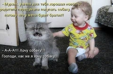 http://se.uploads.ru/t/osDzu.jpg
