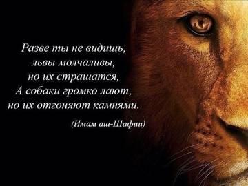 http://se.uploads.ru/t/p79cQ.jpg