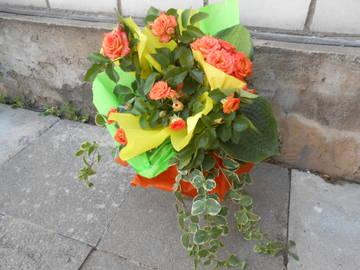 http://se.uploads.ru/t/pBQHK.jpg