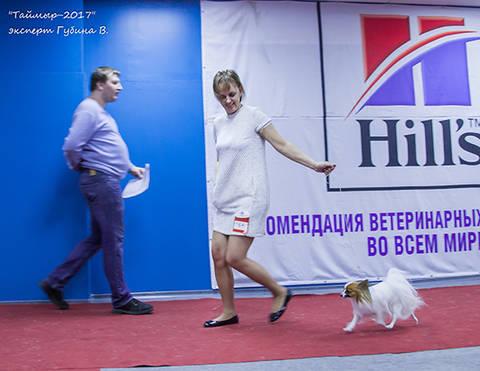 http://se.uploads.ru/t/sf4gF.jpg
