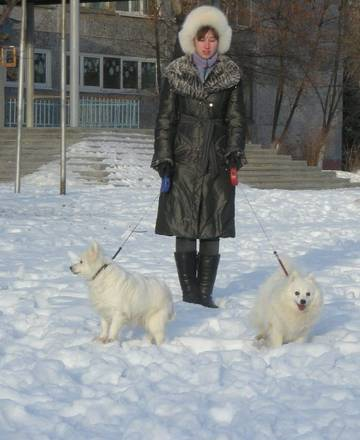 http://se.uploads.ru/t/svWFY.jpg